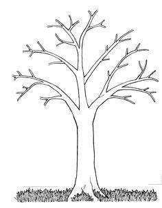 picture  bare tree  branches clip art google
