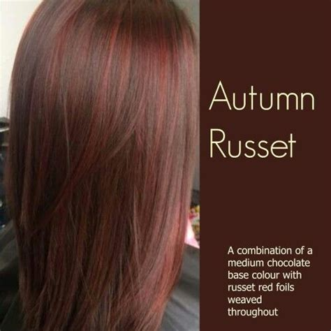 russet hair color the world s catalog of ideas