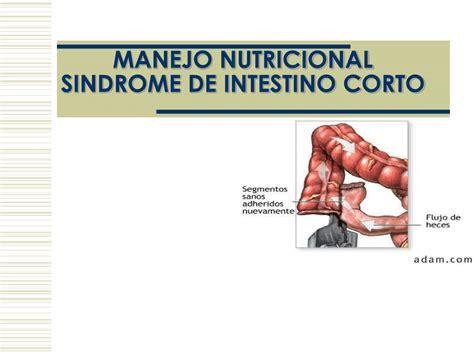 sindrome intestino corto sindrome de intestino corto pdf available