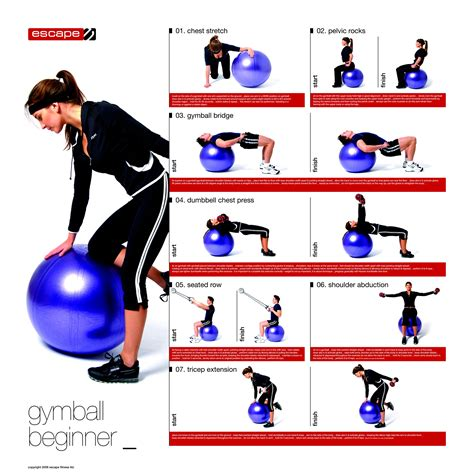 Printable Exercise Ball Workouts For Beginners | gymball poster beginner via escape fitness healthy