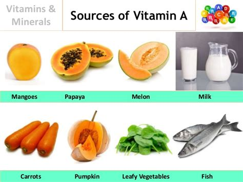 1 vitamins herbs minerals to naturally get rid of dht 5ar stop vitamins minerals