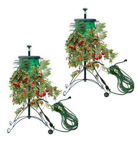 Topsy Turvy Planter Stand by Topsy Turvy Tree Deluxe Hanging Tomato Fruit And Flower