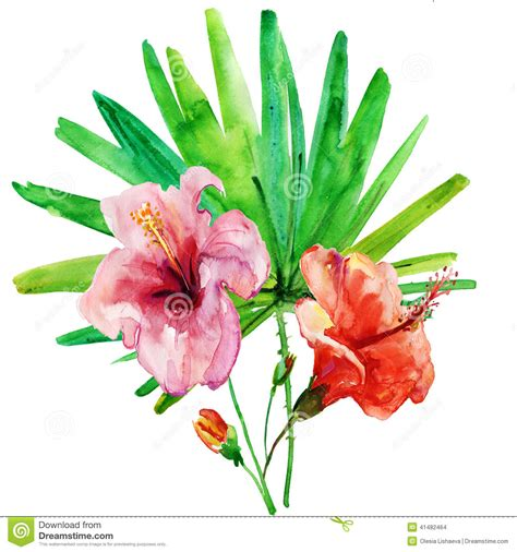 Peony Arrangement Flowers On A White Background Painting Stock Illustration