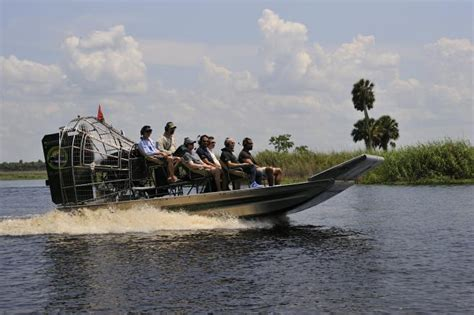 airboat and gator charters airboat gator charters glenwood fl 32722