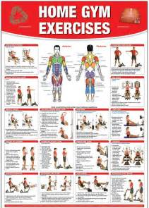 home exercises healthy workout shoulder chest arms