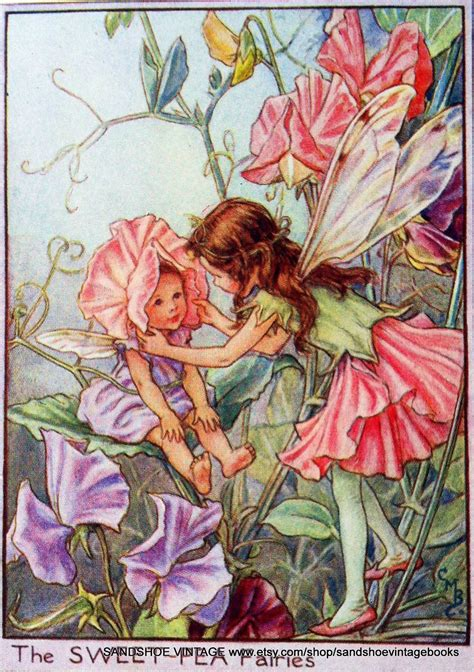 fate dei fiori cicely barker the sweet pea fairies cicely barker zz cicely