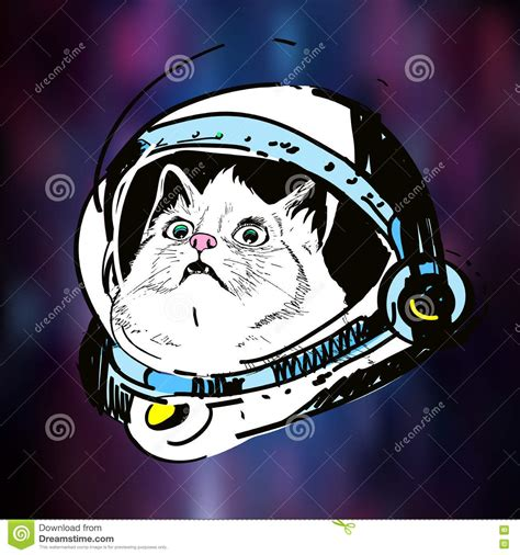 Vector Cat In Space vector sketch illustration print on t shirt