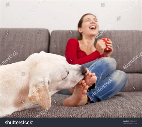 dog licks couch woman drinking coffee on the sofa with her dog licking her