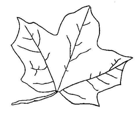Coloring Page Leaf by Coloring Now 187 Archive 187 Leaf Coloring Pages