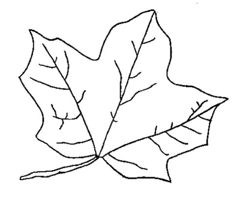 coloring page of a leaf coloring now 187 blog archive 187 leaf coloring pages