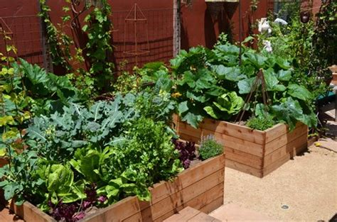 Vegetable Garden Design Ideas Landscaping Network Vegetable Garden Landscaping