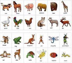 igbo names for animals west africa animal igbo names for animals west africa animal