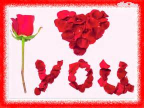 love rose images