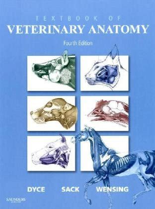 saunders veterinary anatomy coloring book review textbook of veterinary anatomy 4e hardcover in the uae