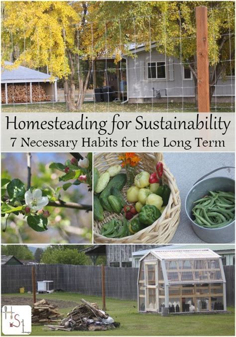 1000 images about homestead life on pinterest