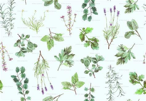 Gardens Inc 3 Flower Patterns Herb Pattern Wallpaper