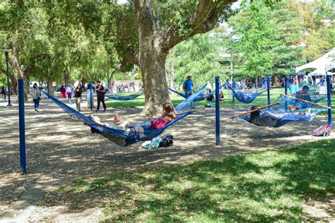 Best Place To Buy A Hammock Best Place To Nap The Hammocks The Aggie