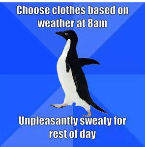 Funny Penguin Memes - welcome to memespp com