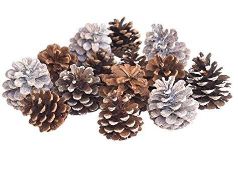 tischdeko weihnachten zapfen tannenzapfen zapfen natur deko gemischt tischdeko
