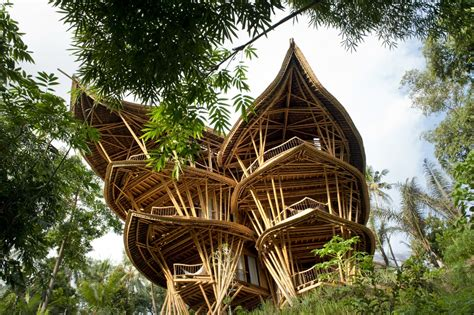 bamboo houses bamboo treehouse in bali is pretty much a mansion in the sky photos huffpost