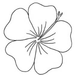 Flowers Drawings Outlines by Flower Outline Plz Use Polyvore
