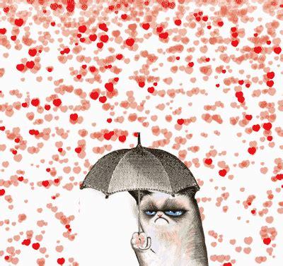 grumpy cat valentines day gif lol valentines day grumpy cat
