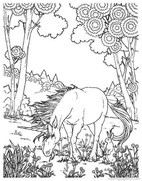 detailed unicorn coloring page detailed unicorn coloring pages get coloring pages