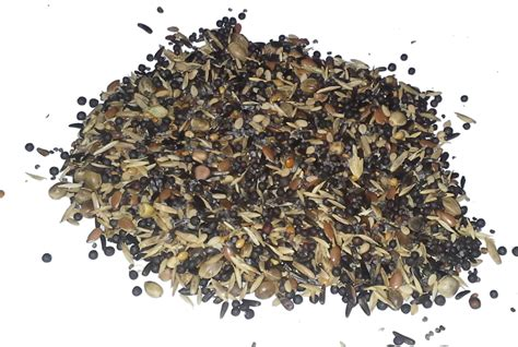 country wide canary british finch conditioning seed