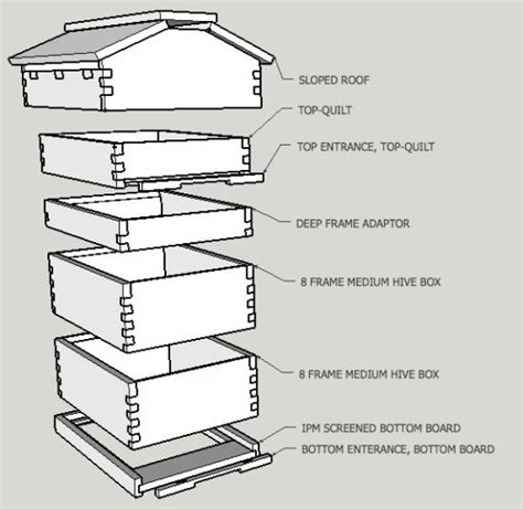 top bar hive with langstroth frames 86 best images about honey bees on pinterest save the bees beekeeping supplies and