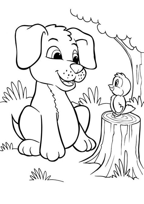 tody bird coloring page 1000 images about drawing anything on pinterest cartoon