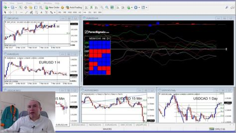 live forex trading room join our free live forex trading room now