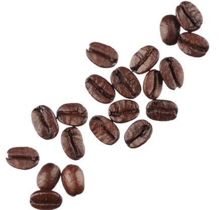 Coffee Di Coffee Bean coffee beana the coffee table