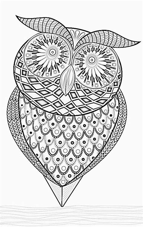 wonderful owls coloring book for adults and stress reduction combining nature poetry and for relaxation meditation and creativity volume 2 books 159 best images about zentangle owls on owls