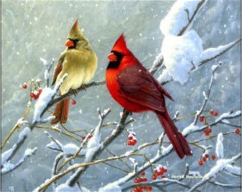 cardinal decorations cardinal decorations etsy
