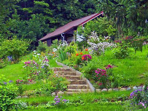 plantes de terre de bruy 232 re pour un jardin couloir