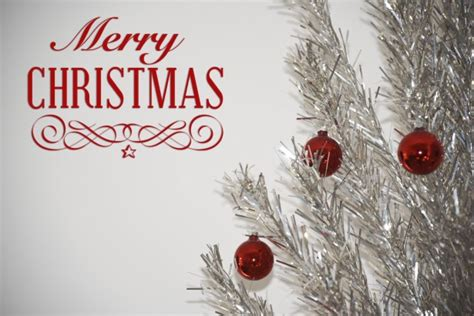 christmas greeting tree  stock photo public domain pictures