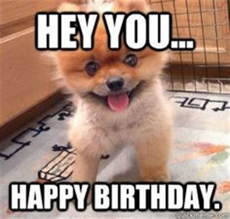 Birthday Animal Meme - birthday quotes memes animals quotesgram