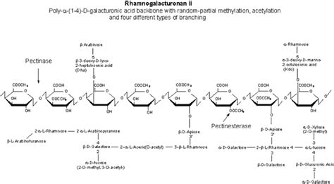 7 analysis of carbohydrates key resources carbohydrate analysis enzyme explorer
