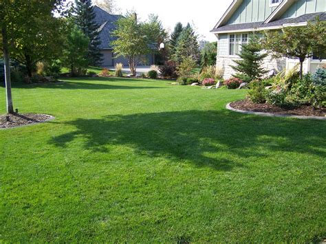 spring landscaping tips spring lawn care 5 tips for a beautiful summer lawn