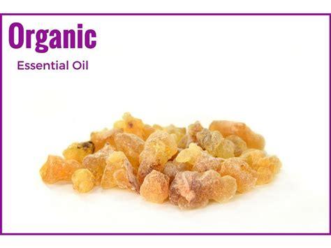 20ml Minyak Kemenyan Frankincense Essential Oils 100 organic frankincense essential rivae from ahimsa oils