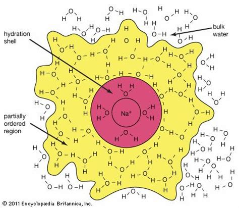 hydration chemistry hydration chemistry britannica