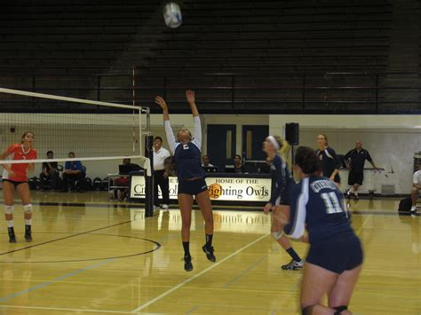 setter definition in volleyball volleyball waits things out citrus college clarion