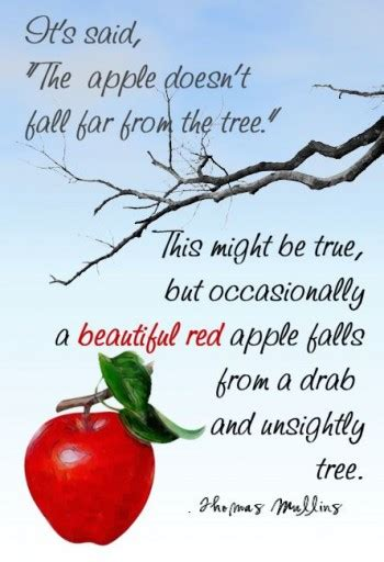 94 fruit that doesn t grow on trees quot the apple doesn t fall far from the tree quot my creations