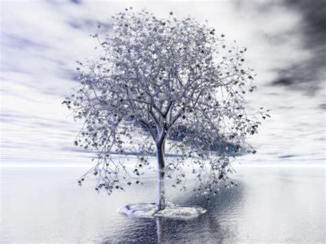 silver tree wallpaper wallpapersafari