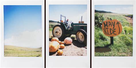 Craigslist Hawaii Farm And Garden by October 2012 Hawaii Wedding Photographer Rubio