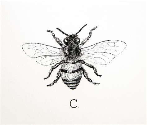 honey bee tattoo designs honey bee black and white honey bee designs