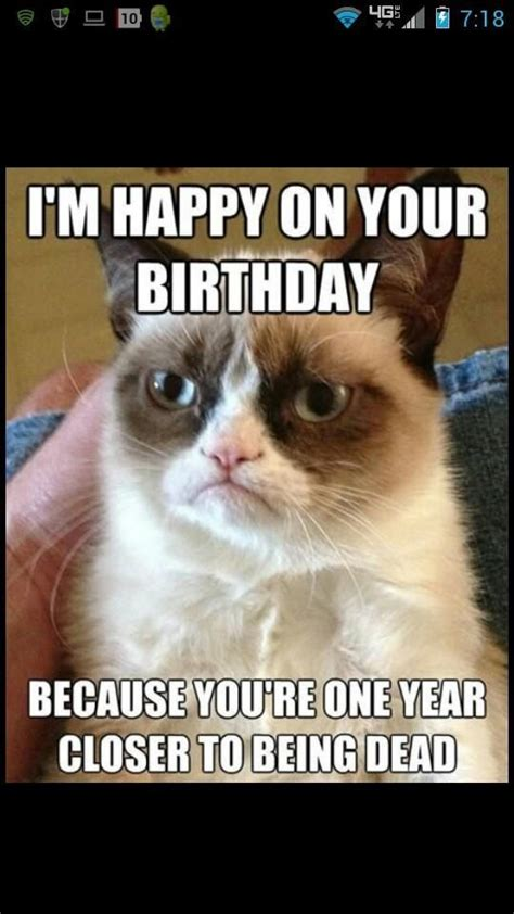 Grumpy Cat Happy Birthday Meme - 38 best images about quot can t get enough of this cat quot on