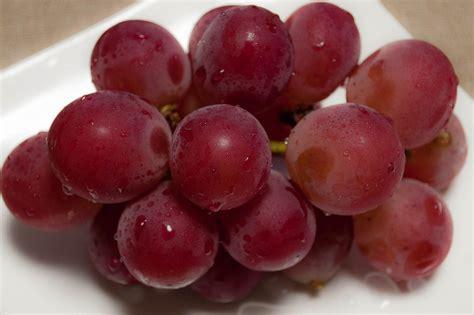 ethics religion talk   ethical  sample grapes