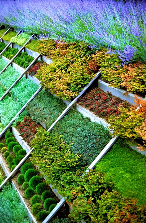 sloped backyard patio ideas landscaping sloping backyard ideas gogo papa com