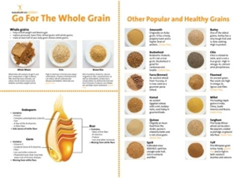 whole grains handout decoration nutritioneducationstore